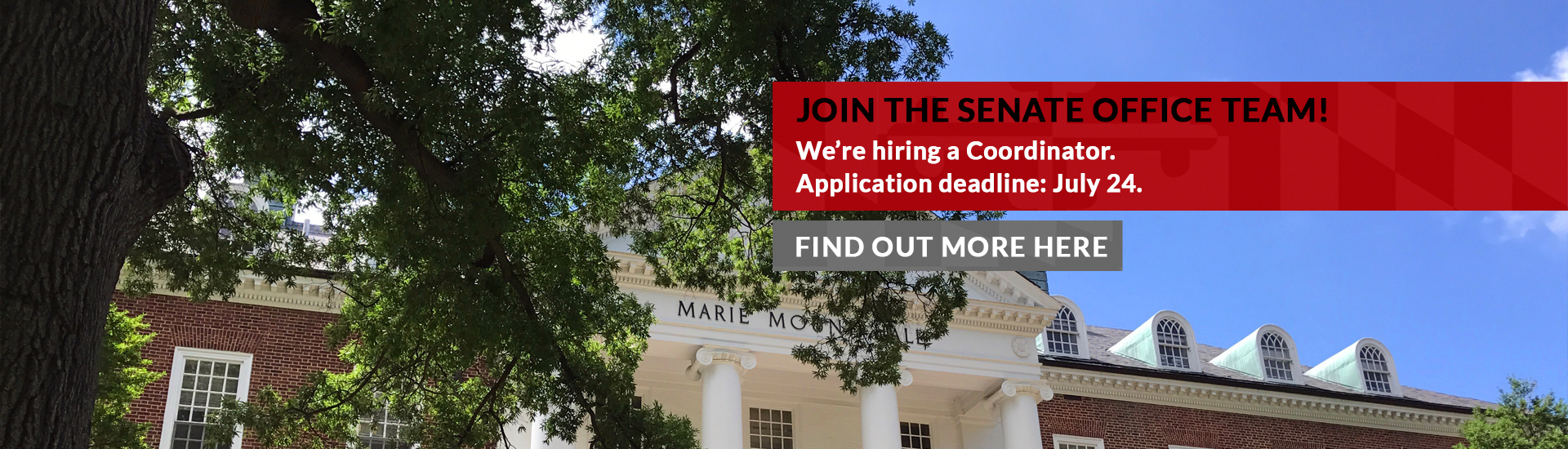 apply for coordinator position by july 26